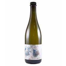 Blewitt Springs Chenin Pet Nat